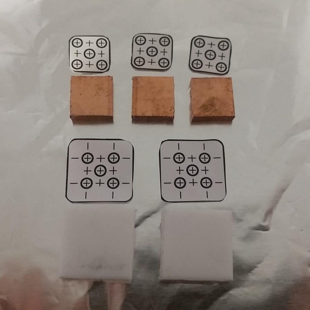AIS-gPPT2-1C Plate Layout